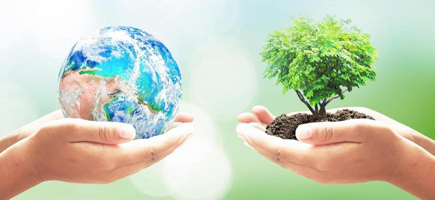 II Eco-Cultura Sureste en los Puertos de Santa Bárbara: un nuevo encuentro ecológico